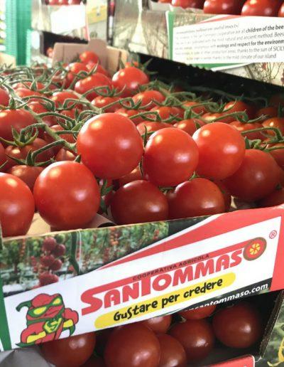 pomodoro ciliegino di altissima qualità